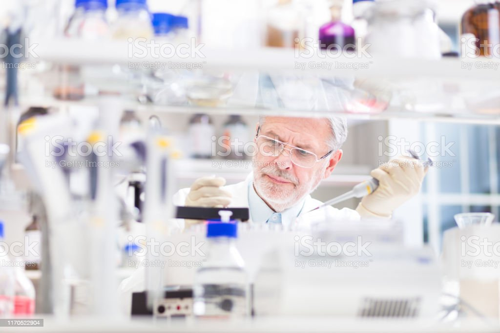 Life Scientist forscht im Labor. - Lizenzfrei Alter Erwachsener Stock-Foto