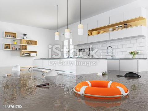 Lifebuoy floating on kitchen