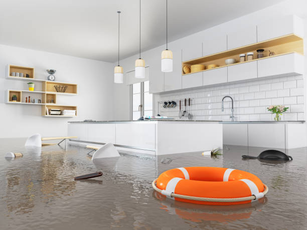 lifebuoy flotando en la cocina - dañado fotografías e imágenes de stock