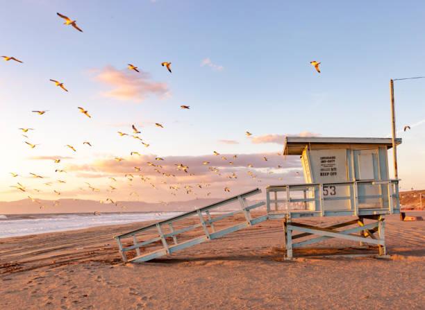 lifeguard towers-södra kalifornien beach - badvaktshytt bildbanksfoton och bilder