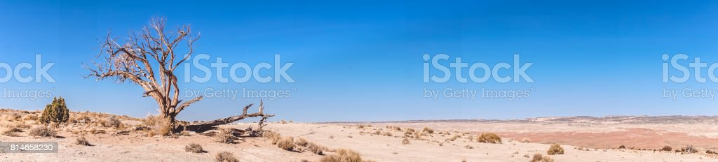 Deserto de Utah sem vida - foto de acervo