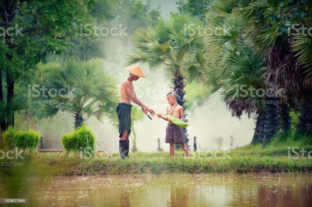 Lebensweise der südostasiatischen Menschen im Feld Land Thailand, Farther und Sohn in Reisfeldern nach Arbeit und so glücklich. – Foto