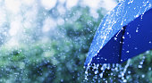 Lifestyle scene of rainy weather. Blue umbrella under rainfall. Banner format with copy space.