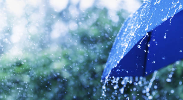 scène de style de vie du temps pluvieux. parapluie bleu sous la pluie. format de bannière. - pluie photos et images de collection