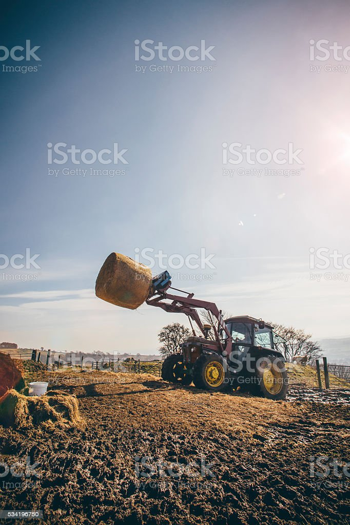 Lifting a Silage Bale stock photo
