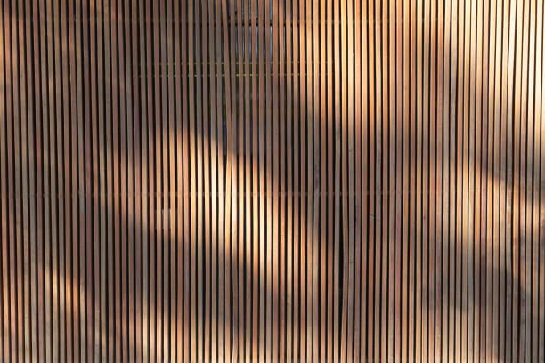 lumière et ombres sur le fond et la texture en bois extérieur de battens. cloison de lamelles de bois pour la décoration à la maison. - cosmetique store photos et images de collection