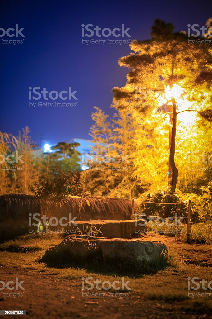 Light and tree in park at night royalty-free stock photo