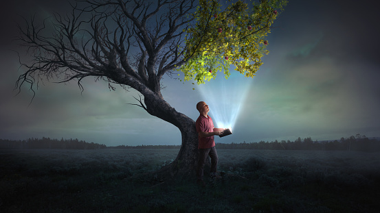 A man holds open a glowing book, that leads to life on a dead tree.