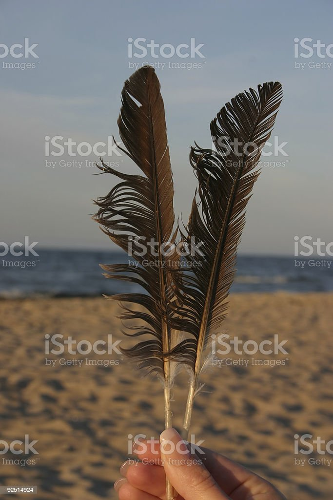light as a feather royalty-free stock photo