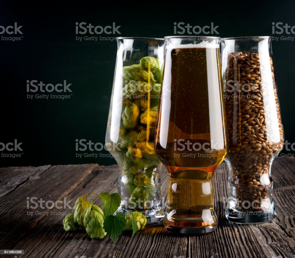 Light beer and ingredients stock photo