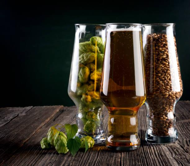 Light beer and ingredients - foto stock