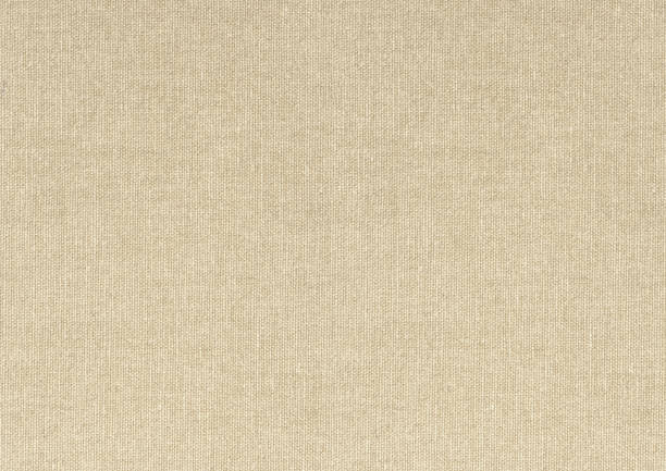 light beige pure canvas background – Foto