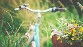 Light blue bicycle is parked with wild flowers in basket