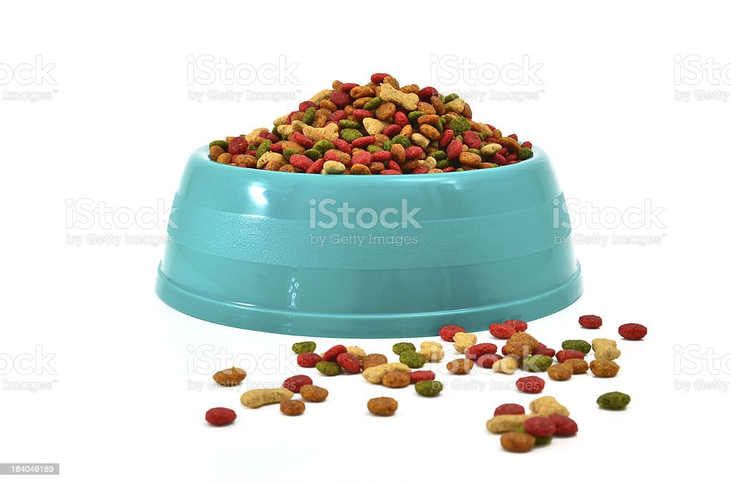 Light blue bowl full of multicolored dog food on white back stock photo