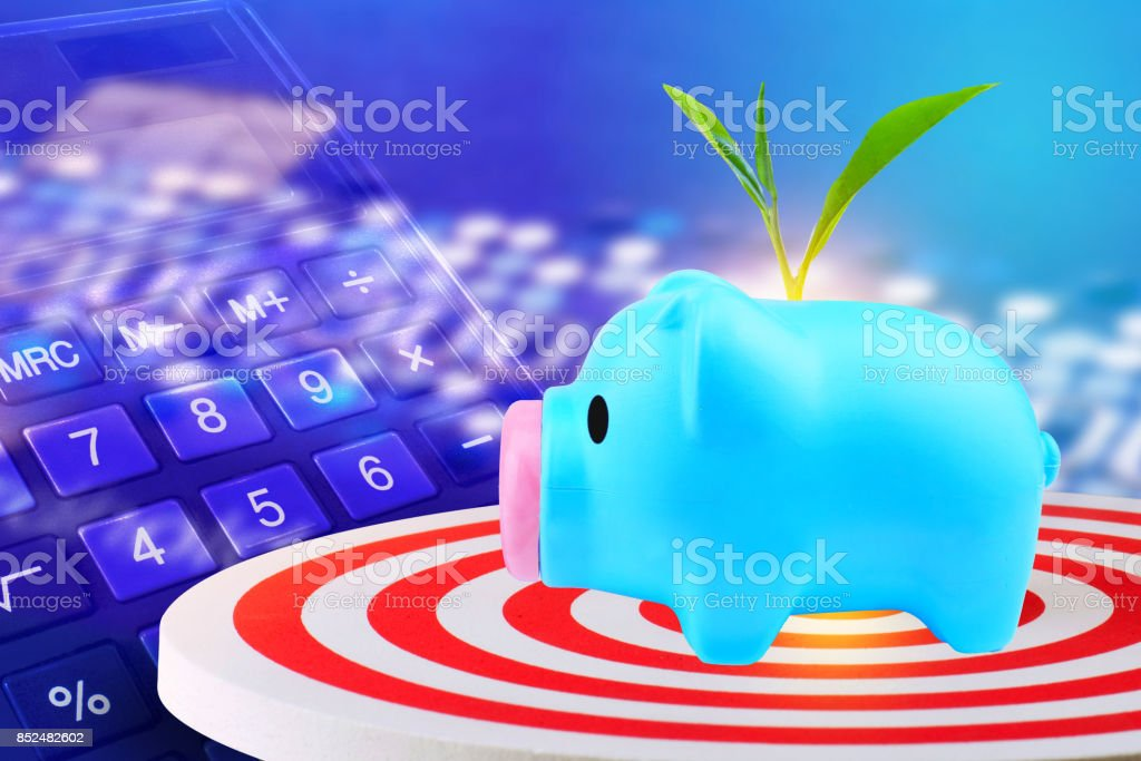 Light blue piggy bank on pile with plant growing on the piggy and dart hitting in target center of dartboard ,competitive business concept stock photo