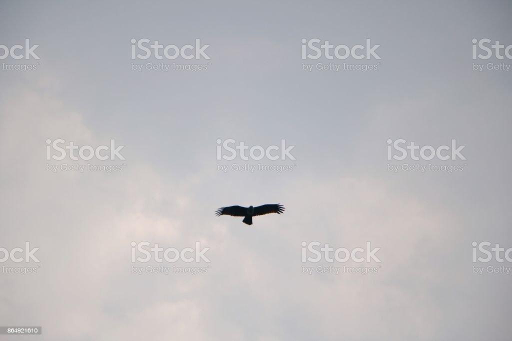 Light blue sky stock photo
