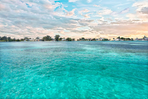 Light blue water sea close up with an island – Foto