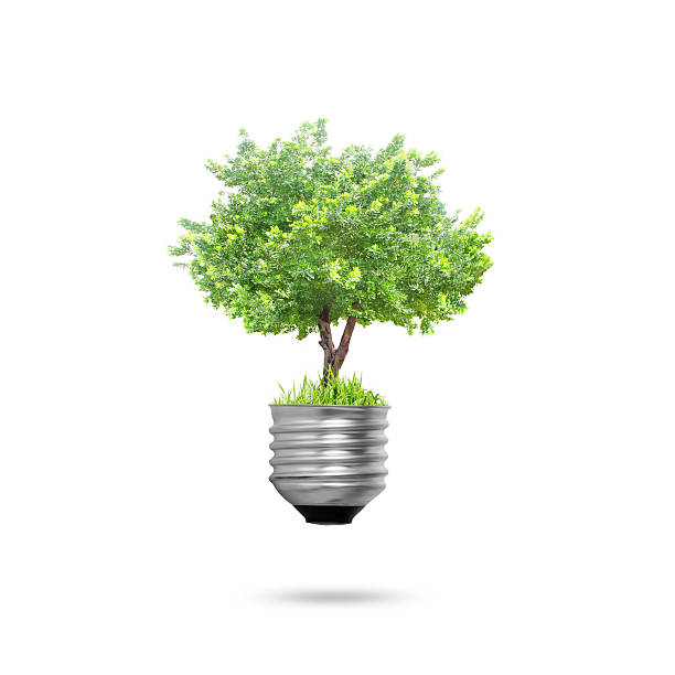Glühbirne Alternative Energie-Konzept – Foto