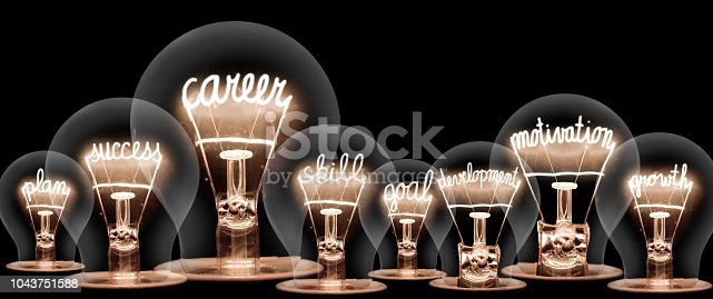 Photo of light bulb with shining fibers in shapes of CAREER concept related words isolated on black background