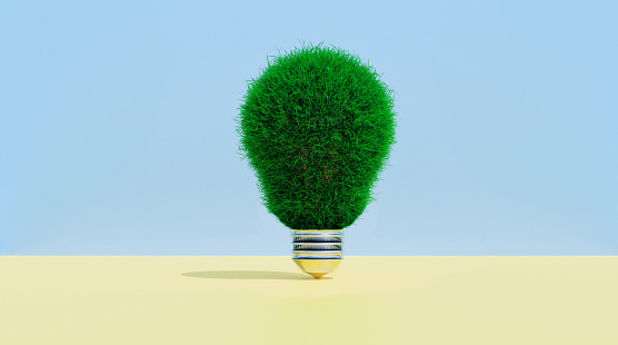 Concept of getting ideas that are environmental friendly. Light bulb covered in grass.