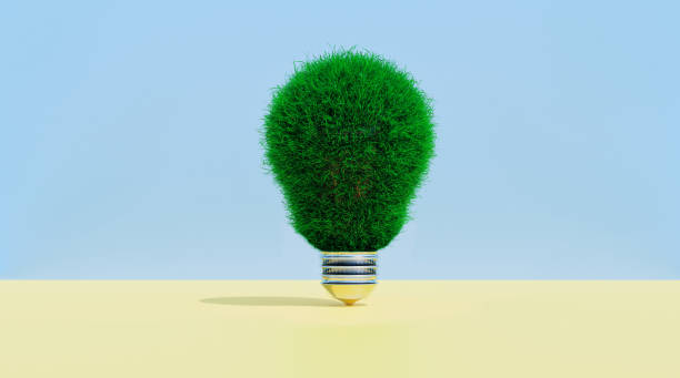 Light bulb covered in grass shows concept of thinking green stock photo