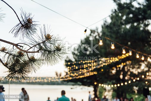 Light bulb decor in outdoor party. Wedding day