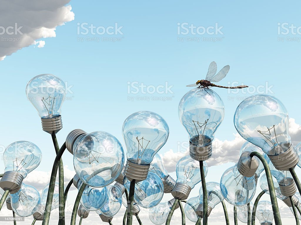 light bulb field royalty-free stock photo