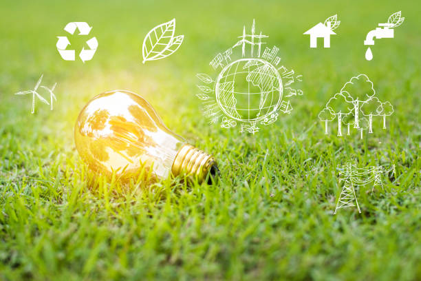 light bulb in green grass, Save earth concept stock photo