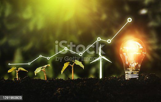 Light bulb is located on the soil, and plant are growing with wind turbine. Renewable energy generation is essential in the future. Alternative sources of energy. Green energy, eco energy concept