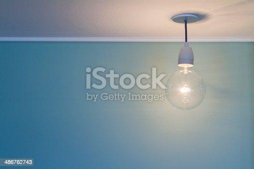 637166104 istock photo Light bulb 486762743