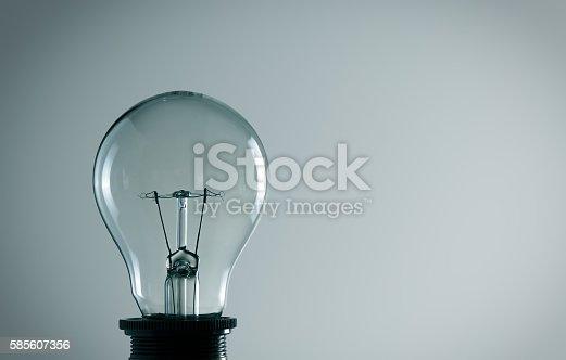 578276932 istock photo light bulb 585607356