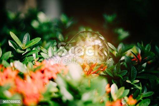Light Bulb Represent Creativity - Stockowe zdjęcia i więcej obrazów Bez ludzi