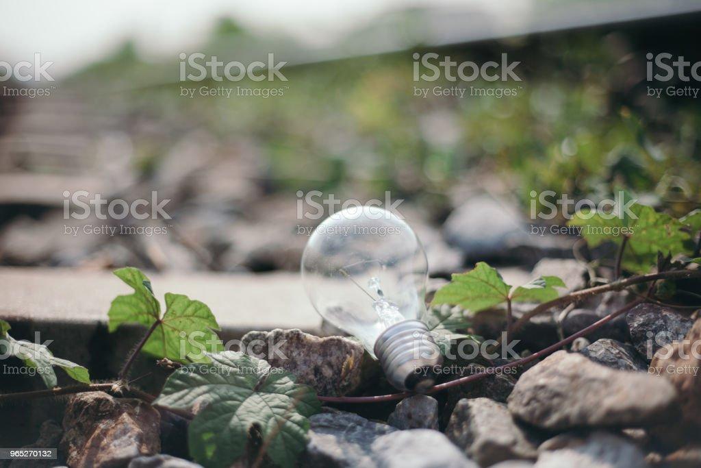 Light Bulb Represent Creativity royalty-free stock photo