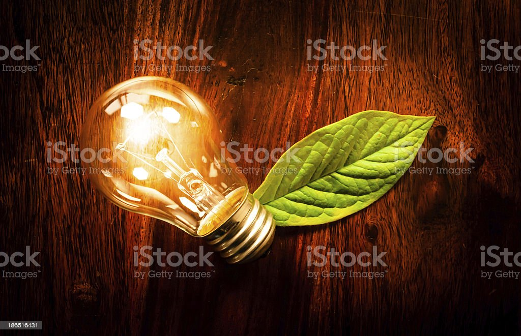 Light bulb with a leaf royalty-free stock photo