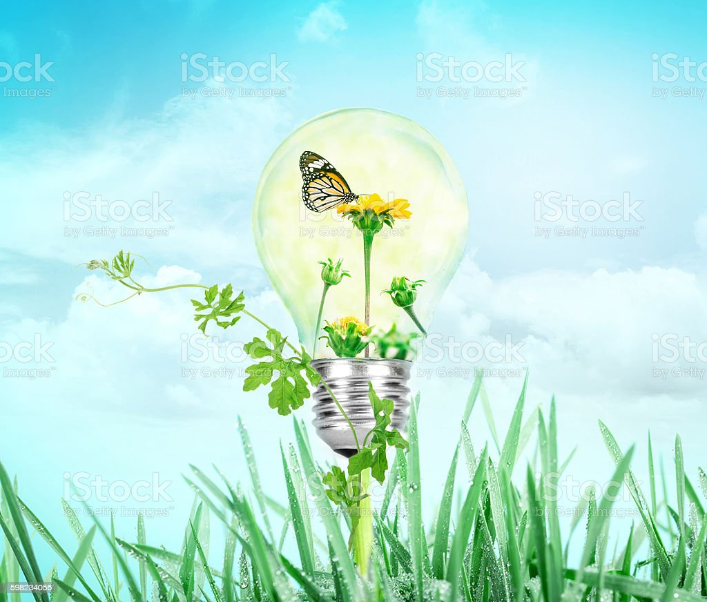 Light bulb with flower and butterfly inside on nature green foto royalty-free