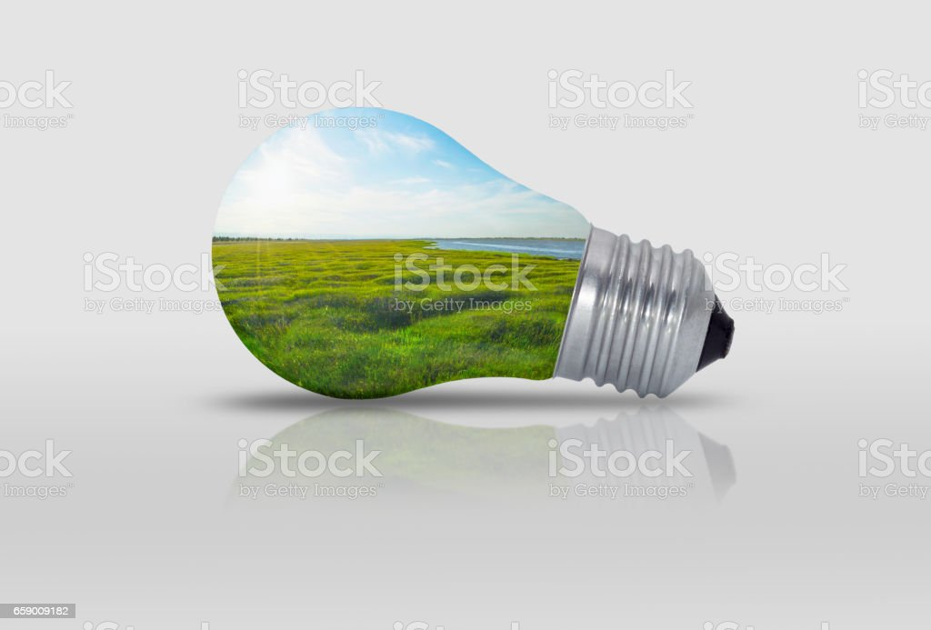 Light bulb with nature inside water trees royalty-free stock photo