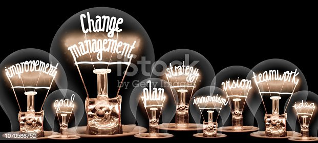 Photo of light bulbs with shining fibers in a shape of CHANGE MANAGEMENT concept related words isolated on black background