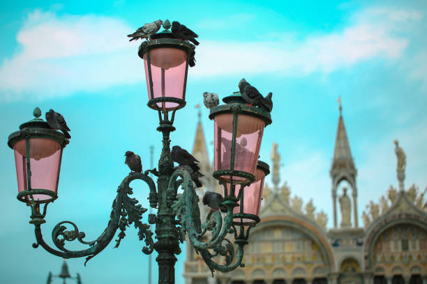 Light Bulbs with Pigeons at Piazza San marco stock photo