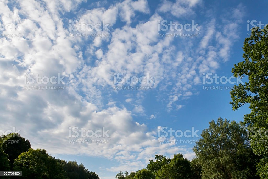 Light clouds in a blue summer sky. royalty-free stock photo