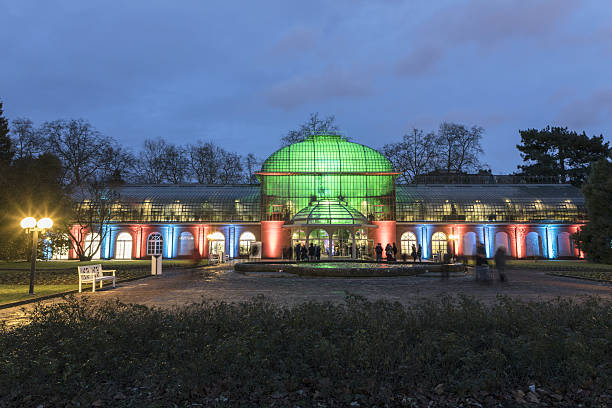 light event winterlichter by night in the palmengarten - ausstellungen frankfurt stock-fotos und bilder