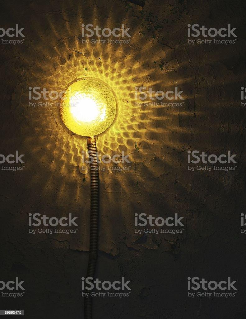 Light flower royalty-free stock photo