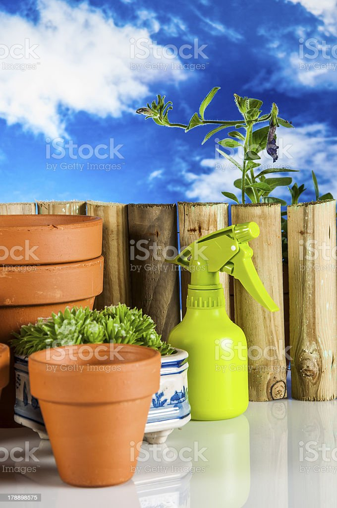 Light garden composition with gardening equipment stock photo