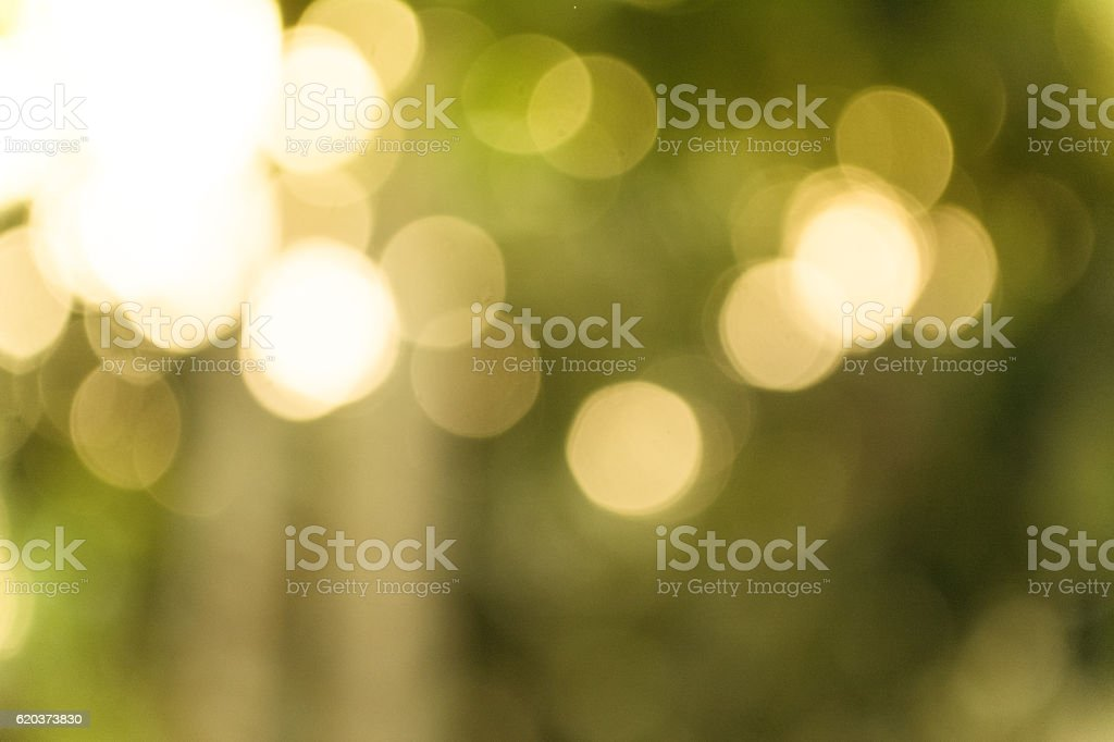light gold and green bokeh background stock photo