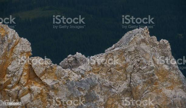 Photo of Light grey and white limestone with fissures and joints in front of a dark background with forest, abstract impression