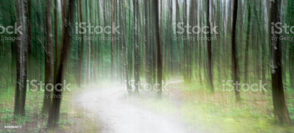light illuminated path through a lush green forest abstract panning style stock photo