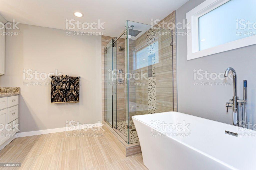 Diseño Ligero Moderno Cuarto De Baño Con Ducha Foto de stock y más ...