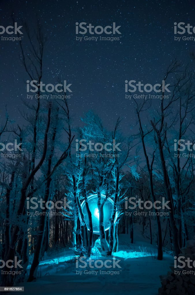 Light Painting Frozen Forest stock photo