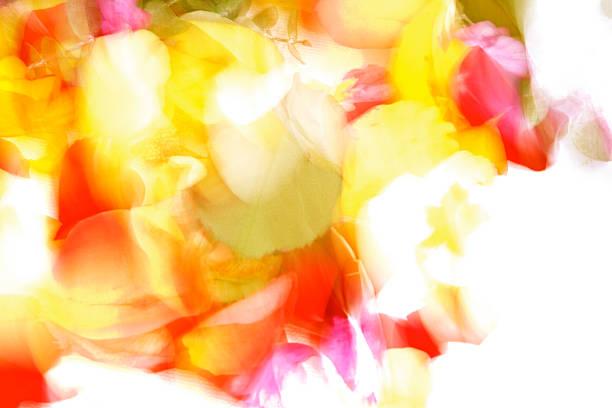 leichte pantone farben - schöne osterbilder stock-fotos und bilder