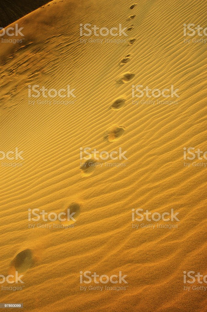 Light, Shades and footprints on sand dunes royalty-free stock photo