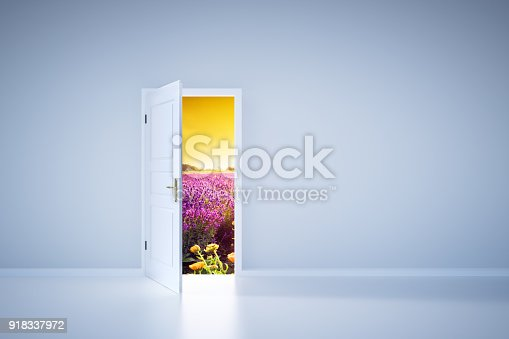 922736714 istock photo Light shining from open door. Entrance 918337972